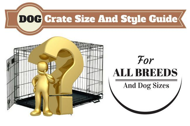 Perro guía del tamaño del cajón escrita por encima de una marca de hombre de oro y de interrogación delante de la caja de perro