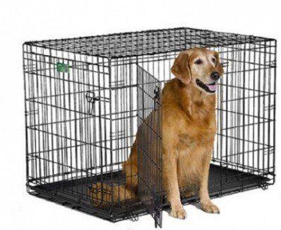 Cajón del Medio Oeste iCrate del animal doméstico con el interior en BG blanca