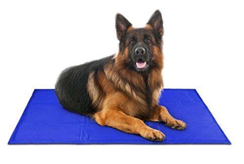 mejor perro tapete de refrigeración