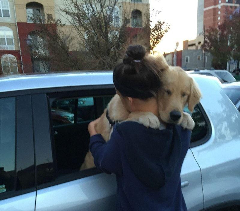Diciendo adiós