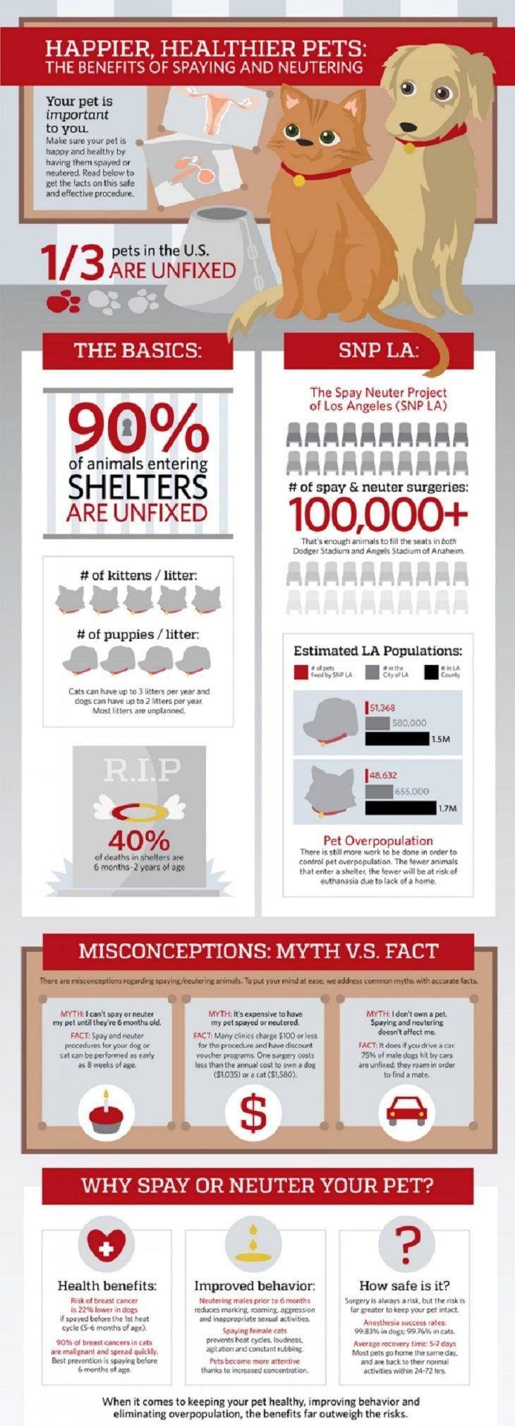 Los beneficios de la esterilización esterilización