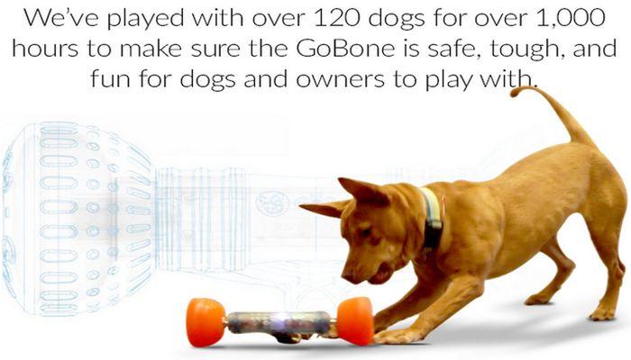 Whoa! Espere hasta que vea lo que este juguete perro puede hacer!