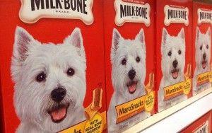 ВїPor quГ© y dГіnde comprar alimentos para mascotas al por mayor