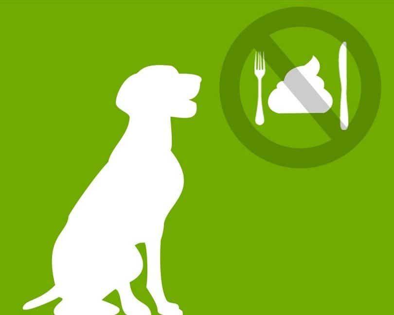 Prohibido comer caca