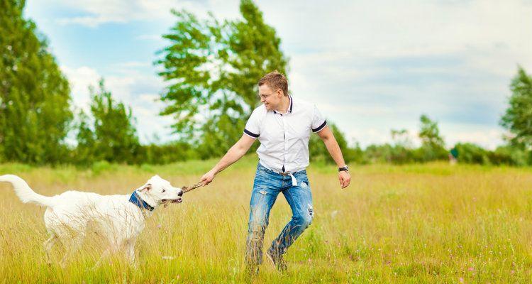 ¿Por qué algunos perros no les gusta a los hombres y qué hacer al respecto